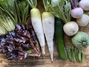 兵庫県丹波市×野菜/法人【35110】-top