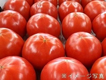 埼玉県羽生市×野菜/法人【35112】-2