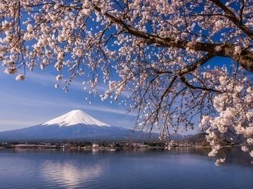 富士河口湖町 地域おこし協力隊-1