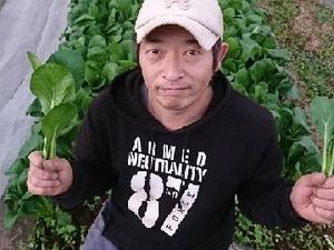 だいじの農作地-top