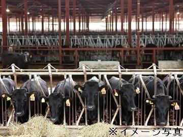 北海道幌加内町×肉牛/法人【35153】-1