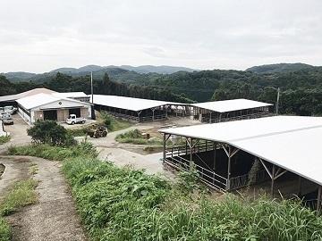 農業生産法人株式会社野元牧場-8