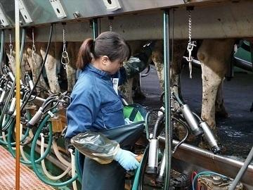 有限会社菊地農場-2021-06-14-2.jpg
