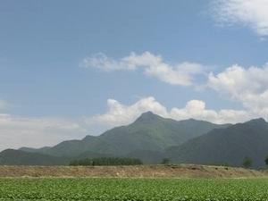 鈴木以兼農園-top