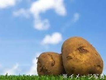 北海道真狩村×野菜/法人【35179】-top