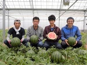 鹿本農業協同組合-top