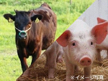千葉県香取市×個人・養豚/法人【35227】-top
