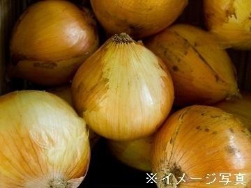 兵庫県南あわじ市×野菜法人【35269】-2