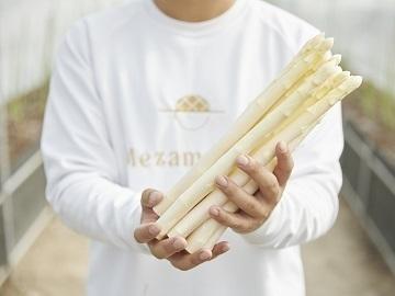 株式会社めざめ-5