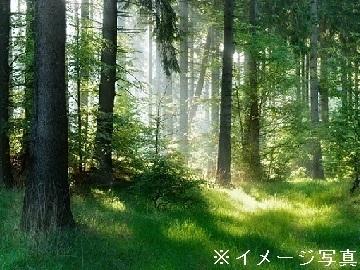埼玉県さいたま市×植木/法人【35321】-top
