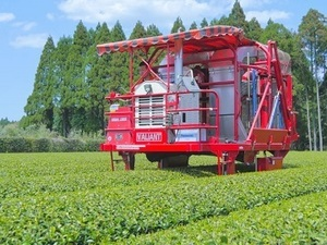 鹿児島県志布志市×お茶・野菜/法人【35356】-top