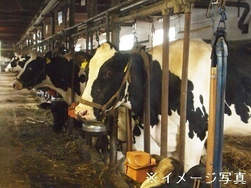静岡県富士宮市×酪農/法人【35368】-top