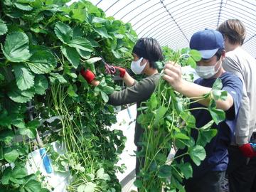 栃木県農業大学校-4