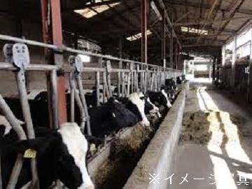 北海道美瑛町×酪農/法人【35490】-top