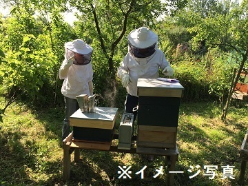 長野県塩尻市×養蜂/法人【35557】-top