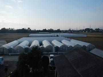 株式会社横田農園-top