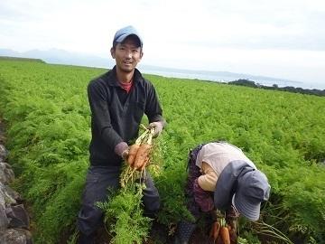 有限会社山新田青果-top