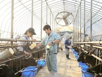 農業生産法人 有限会社若林牧場-6
