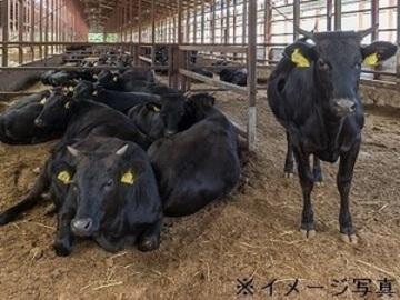 北海道・山形県×肉牛(育成)/法人【33112】-top