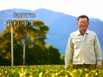 有限会社萩村製茶-4