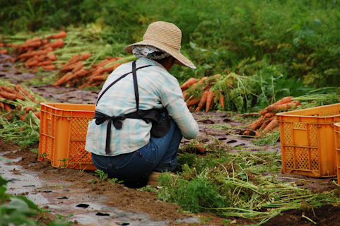 農業の階層的課題