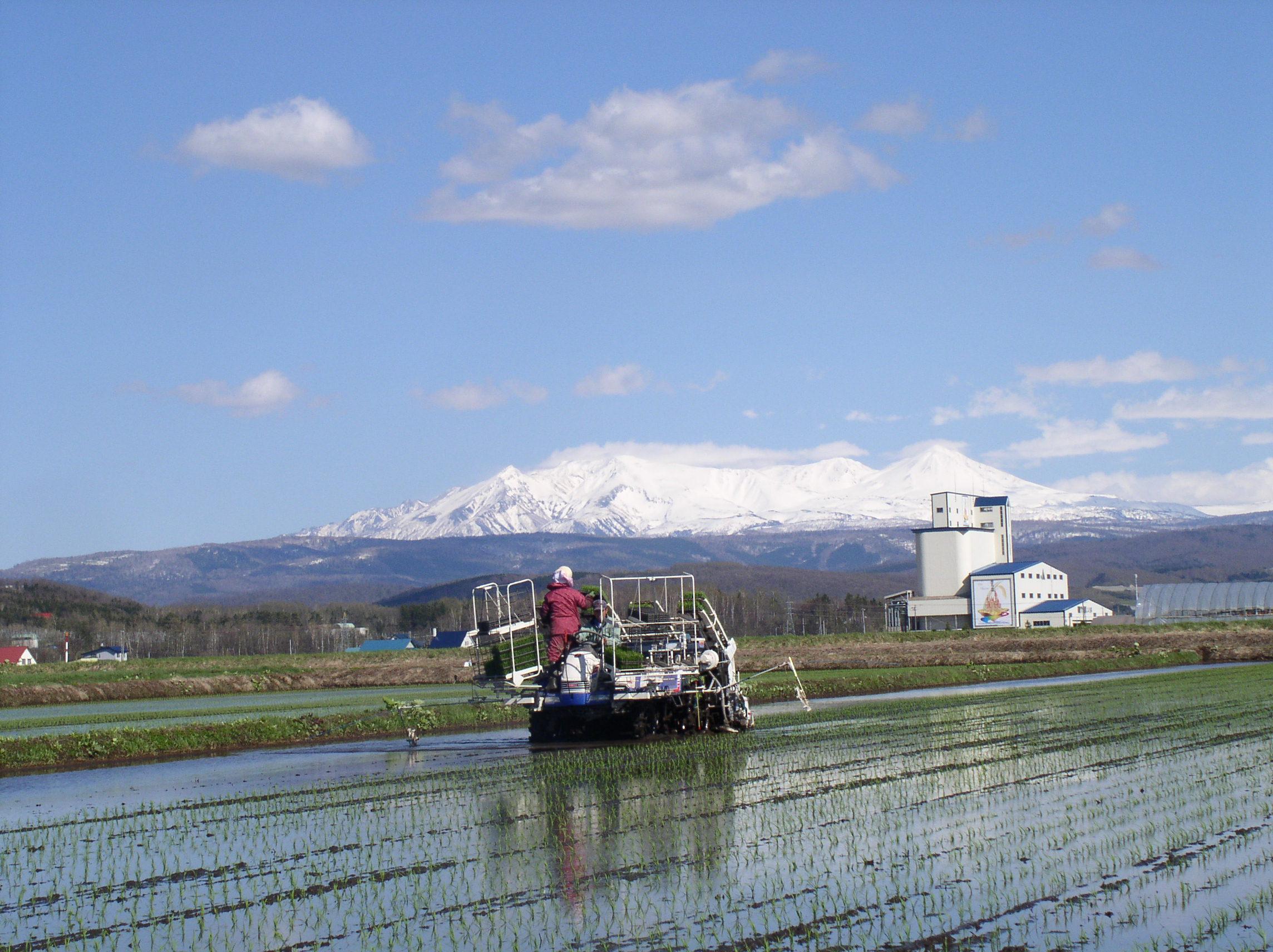 デフレと食と日本の農業